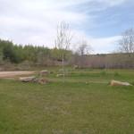 West Cabin Lawn 2