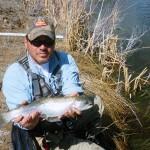 Utah Rainbow Trout